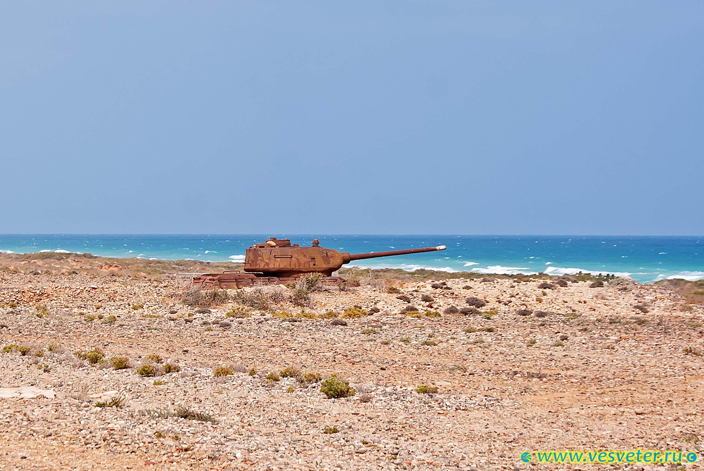Йемен, остров Сокотра.