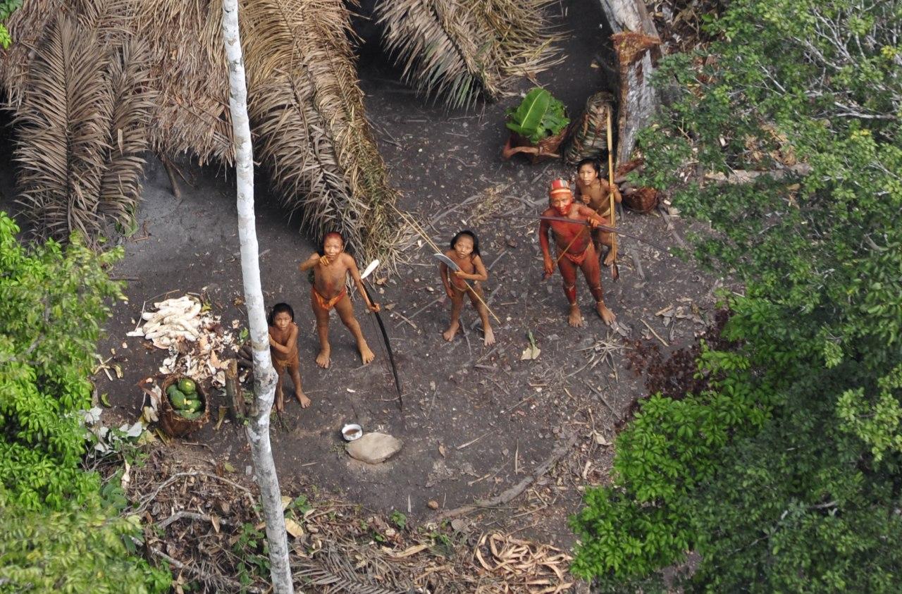 Amazon tribe nudist hardcore video