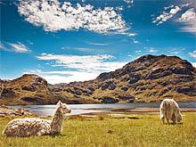 Фототур в Эквадор. Национальный парк Cajas