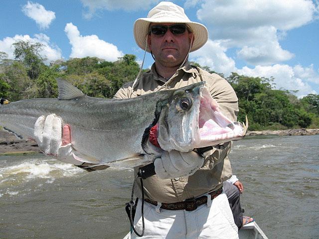 рыбы сша рыбалка
