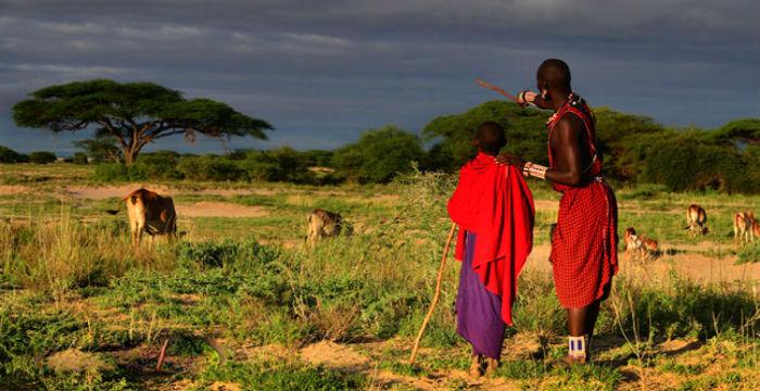 Африка. Кения. Масаи-Мара