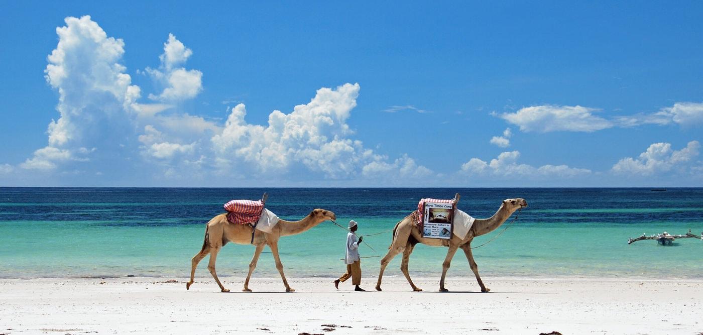 Пляжи Момбасы, Кения