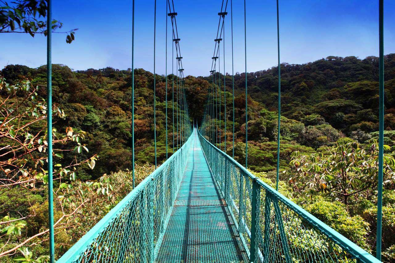 Подвесные мосты. Сельватура