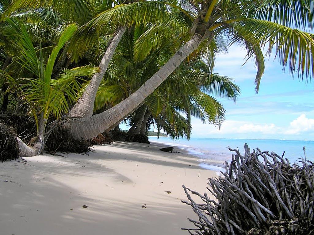 Остров Святой Марии. Пляж и пальмы