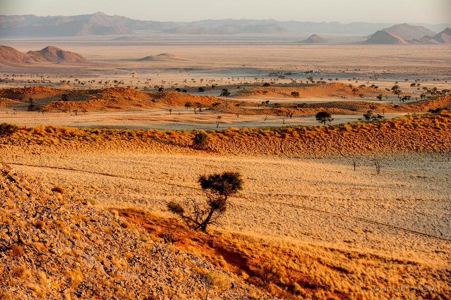 Русло реки Цонаб