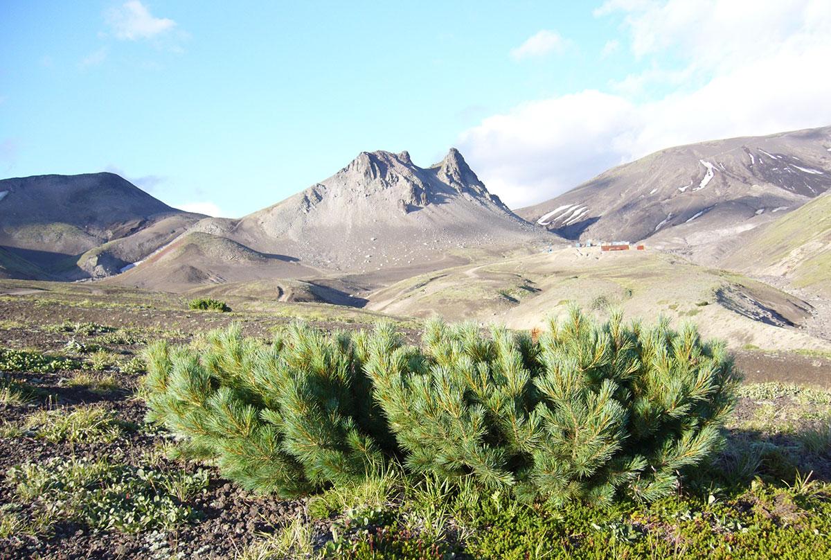 Камчатка, гора Верблюд