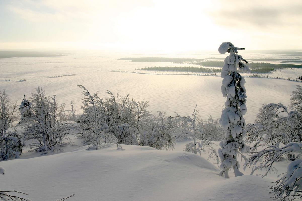 Кольский п-ов зимой