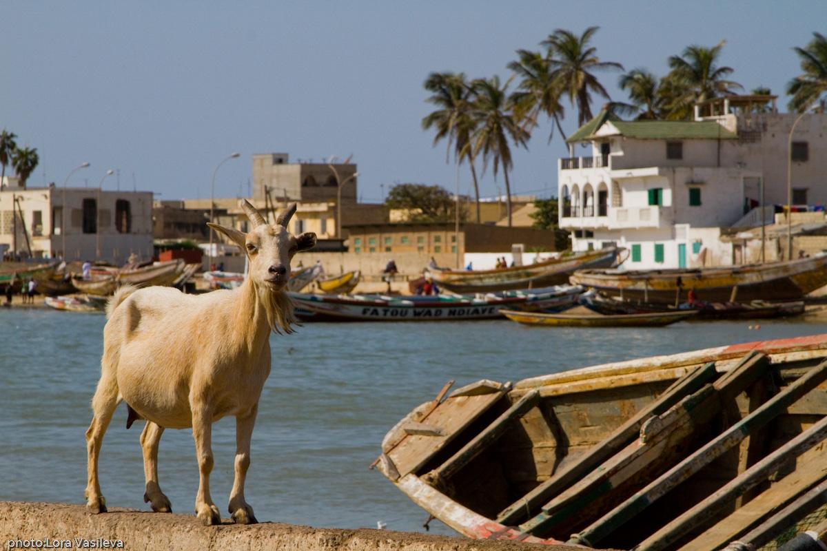 Сент-Луи. Сенегал