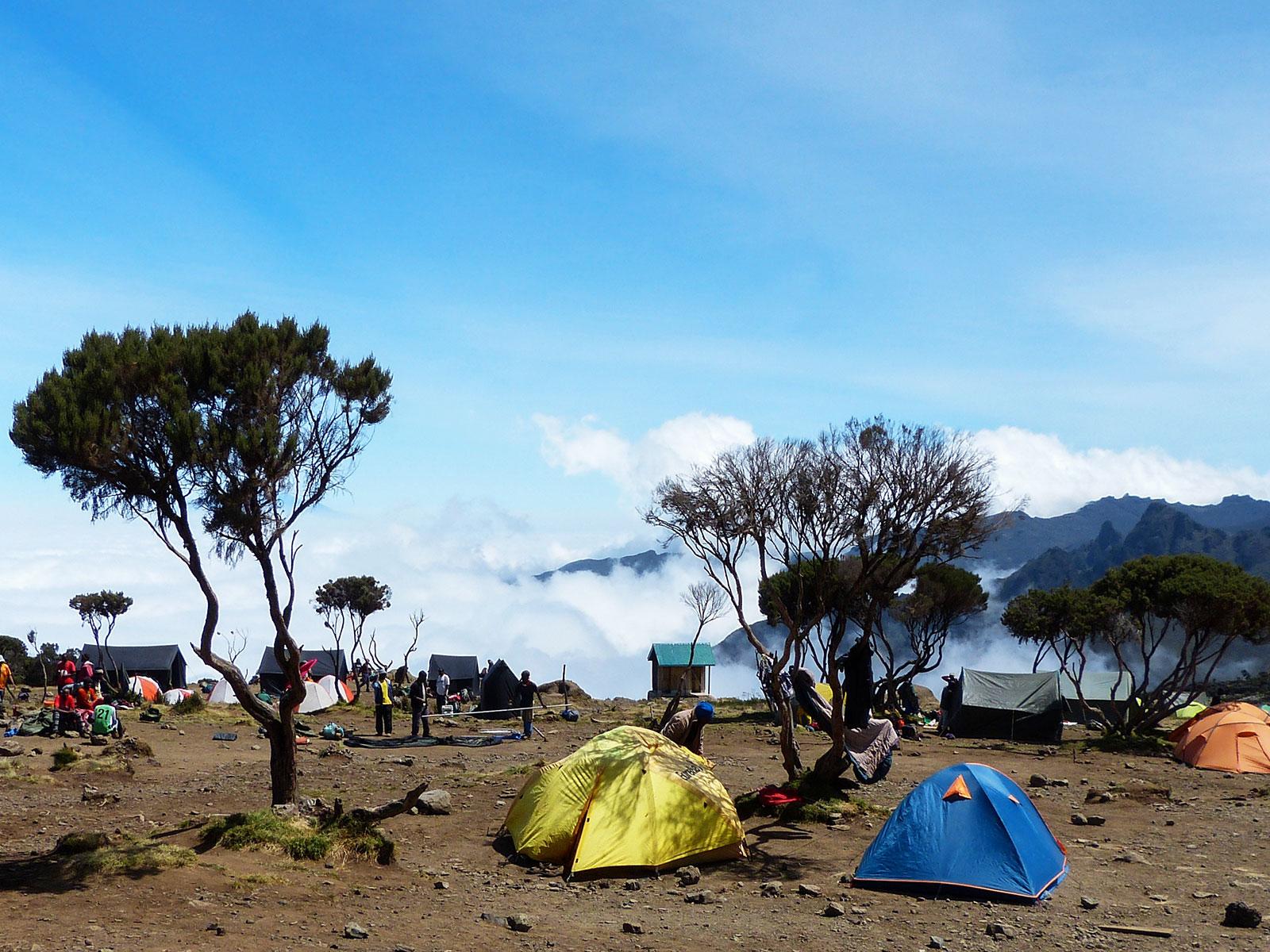 Лагерь Шира. Килиманджора