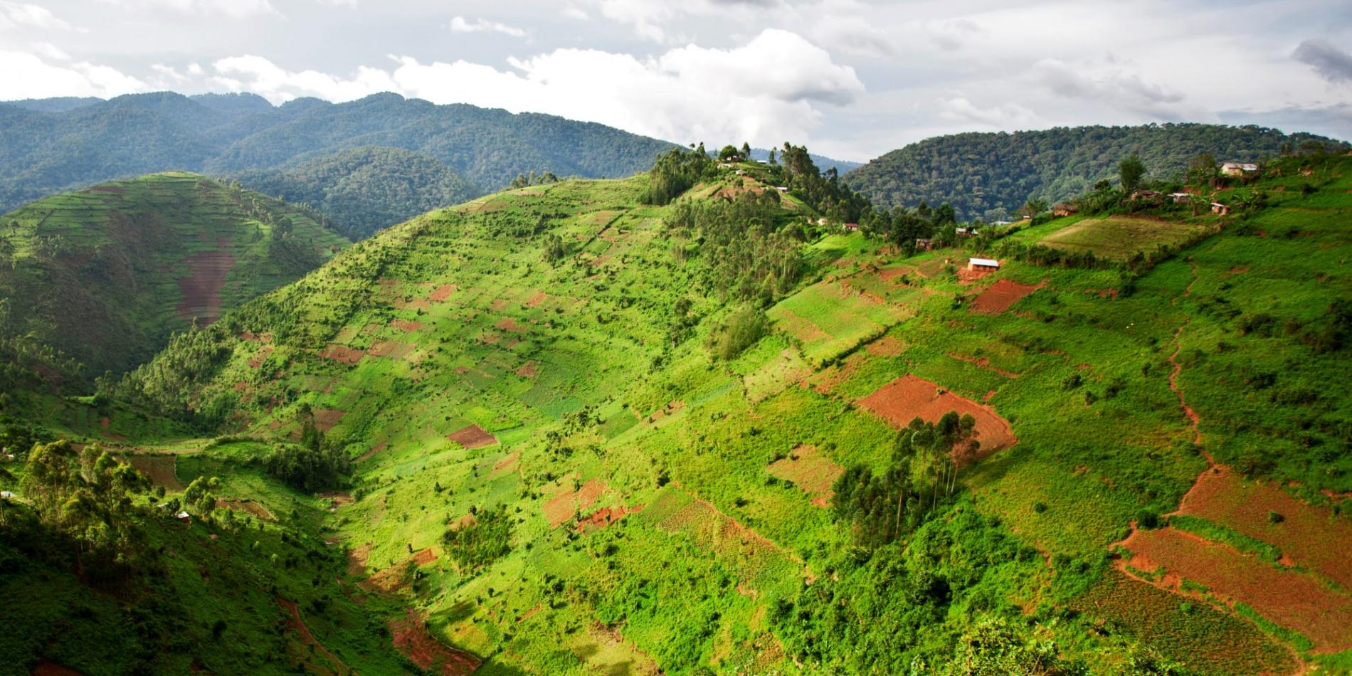 Пейзажи Уганды