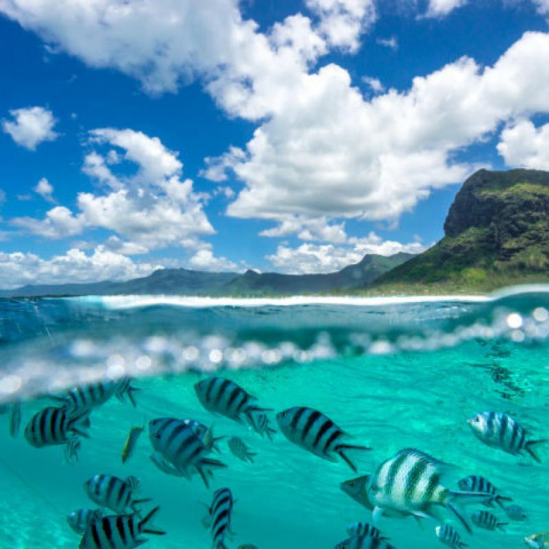 Мадагаскар-Маврикий