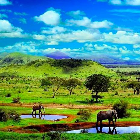 В Кению с детьми