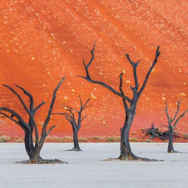 Все краски Намибии